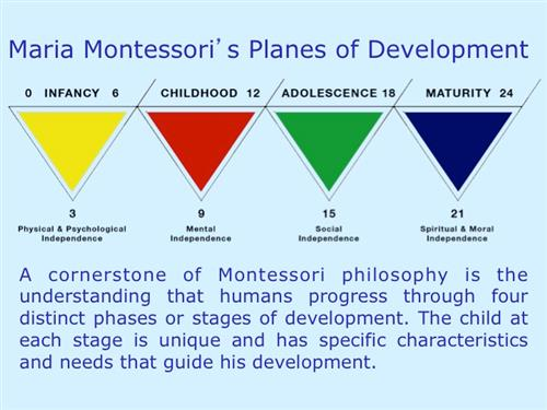 four planes of development montessori essay Montessori was later to give a lecture on the four planes of education at an  not just for the first and second planes of development for the child in the.
